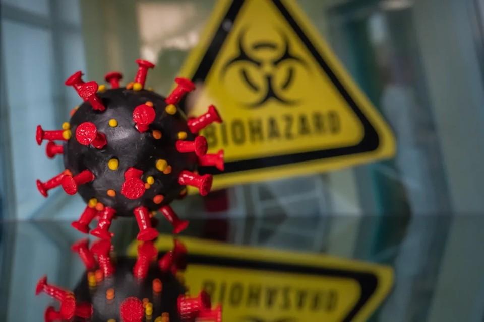 Комздрав просит молодежь Петербурга активнее прививаться от коронавируса.
