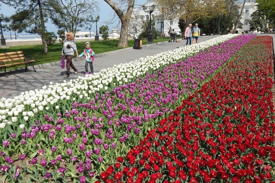 Город украсят цветами.