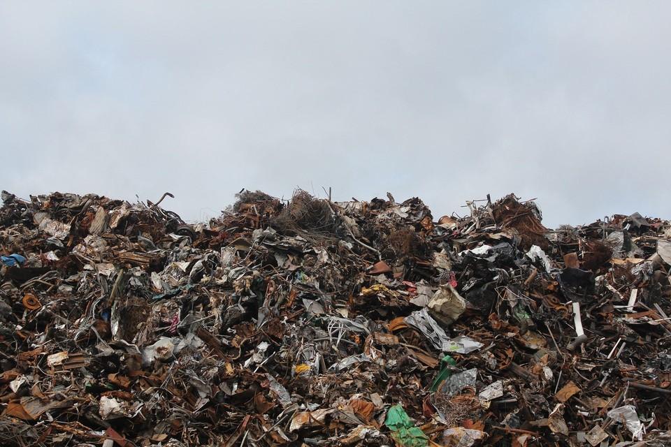 Всего с января муниципальные работники ликвидировали около 1000 очагов скоплений мусора