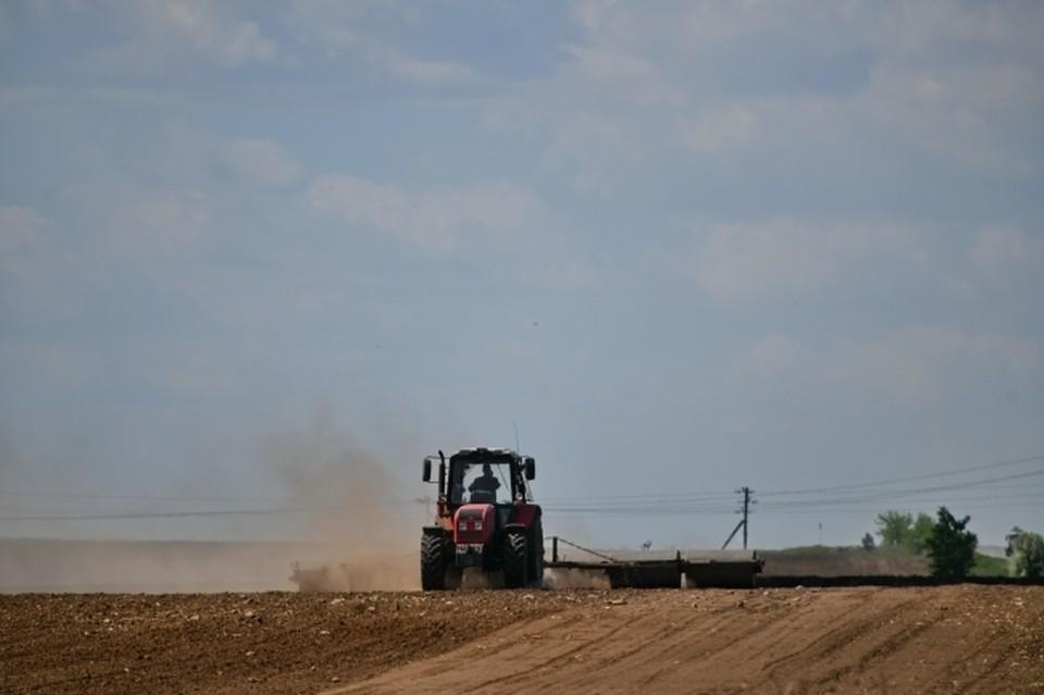 Растениеводы завершают посевную в те же сроки, что и в прошлом году, несмотря на поздний старт весенне-полевых работ.