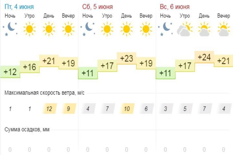 Выходные обещают быть солнечными. Скриншот с сайта Gismeteo