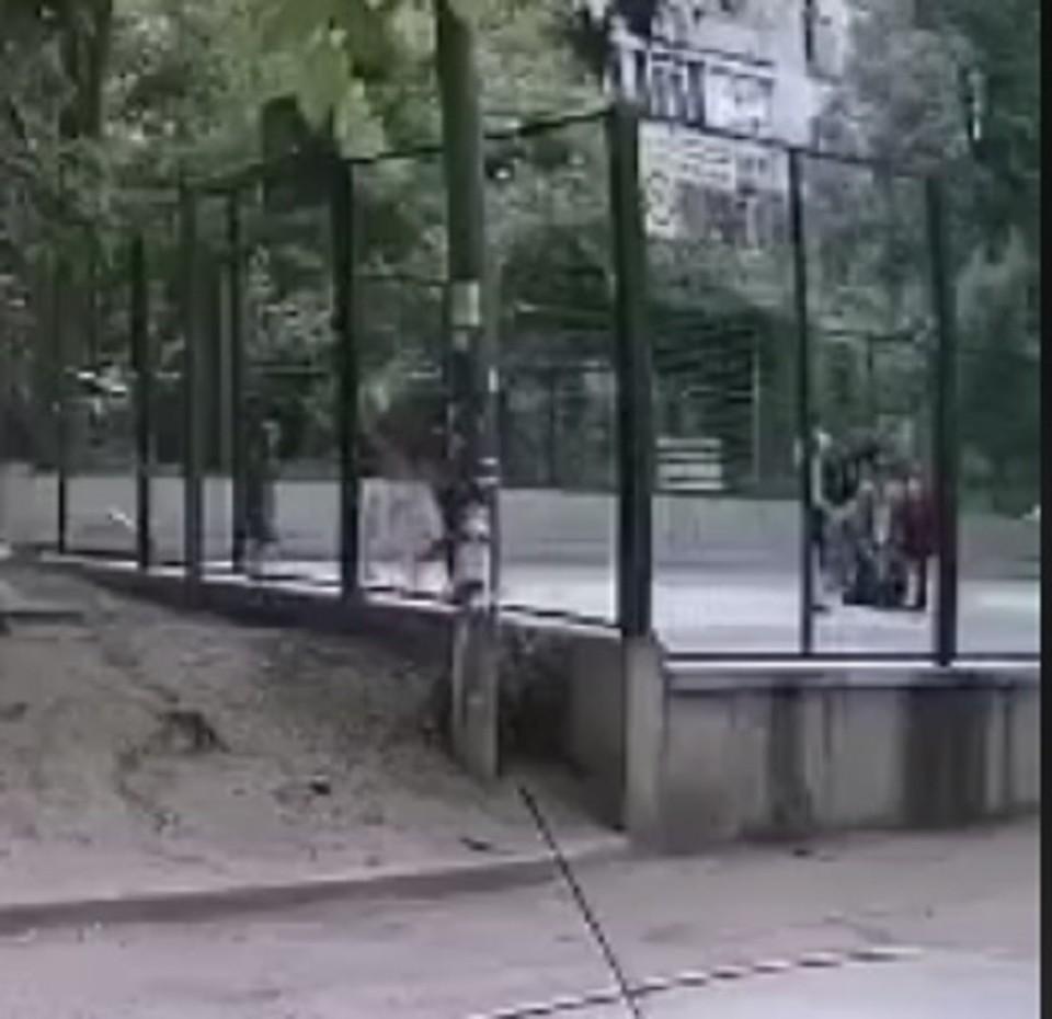 Момент избиения попал на камеру видеонаблюдения (Фото: скрин с видео).
