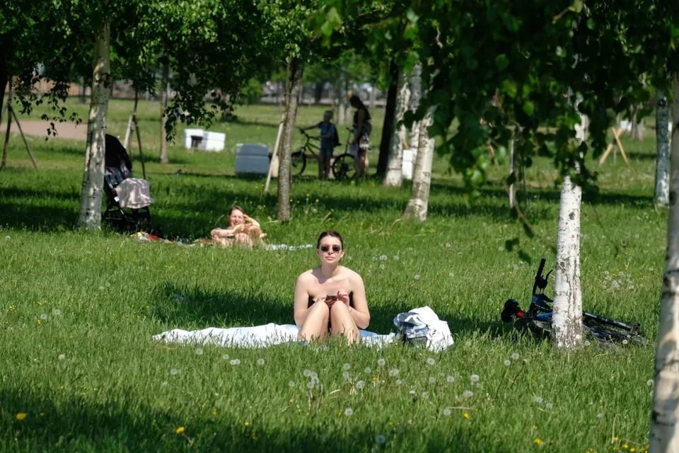 6 июня в Ленобласти обещают жару до +30 градусов.