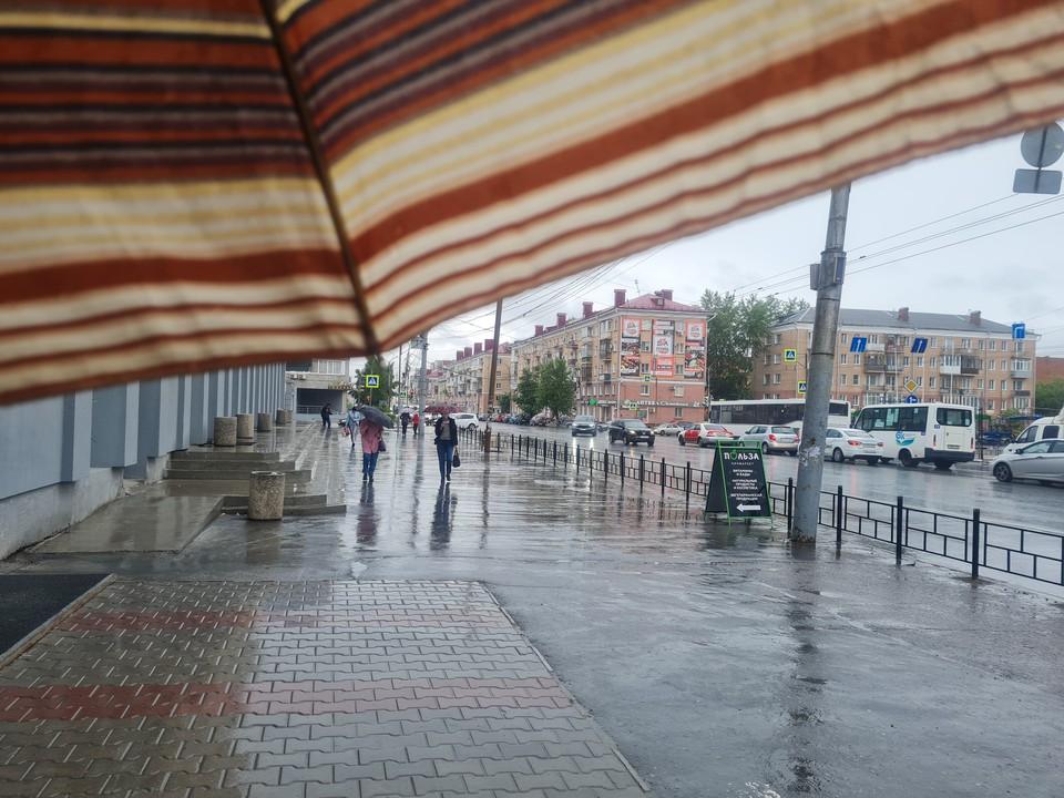 Начало недели в Омске будет дождливым и тёплым.