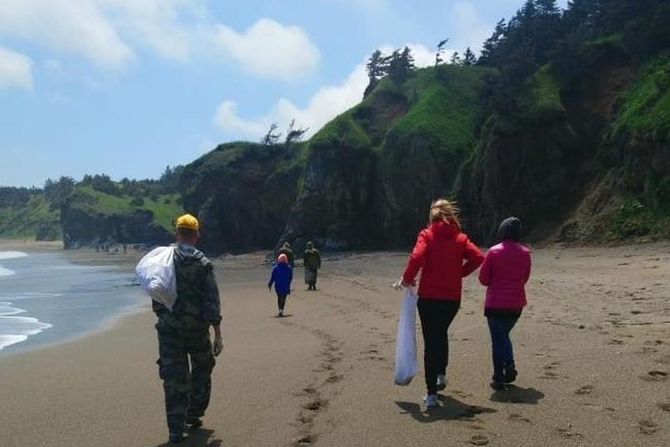 Большая уборка прошла на побережье и лесной зоне памятника природы