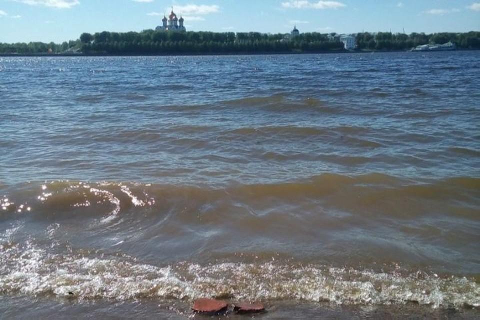 На лето туристические компании Ярославской области разработали несколько предложений