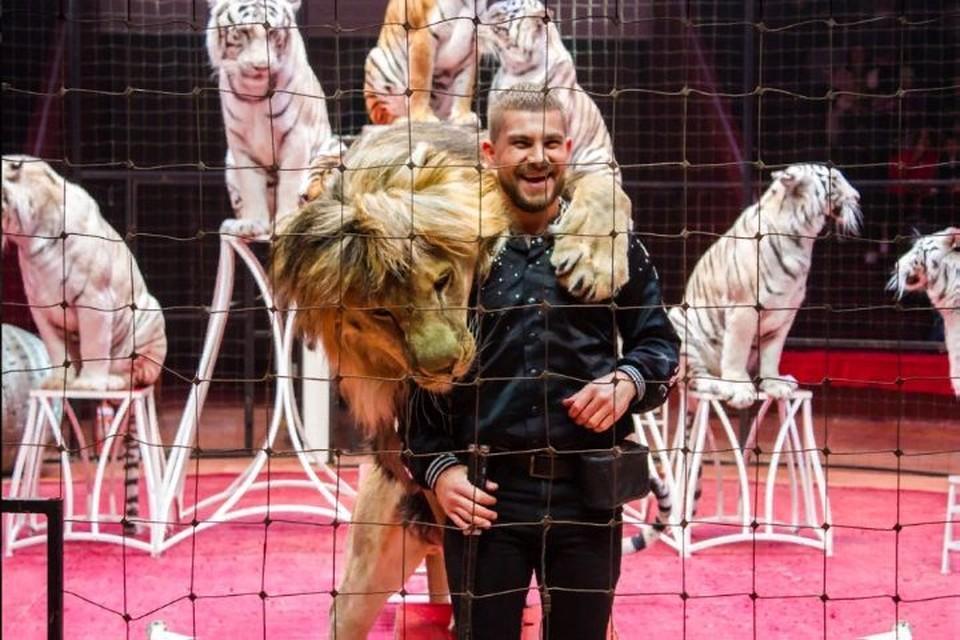 ФОТО: Ярославский цирк