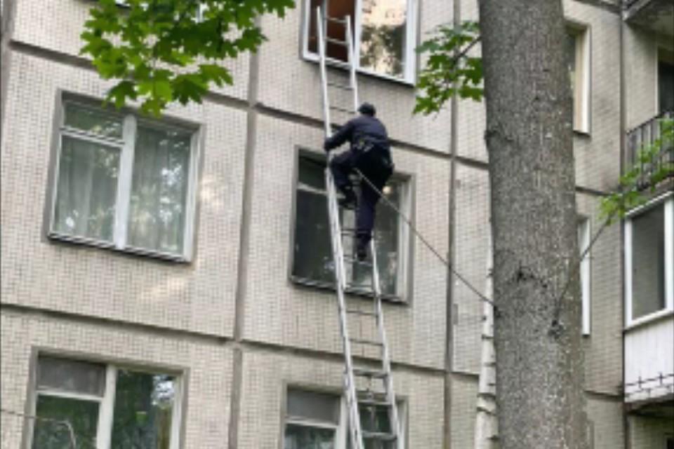Патрульный залез на третий этаж, чтобы спасти стоящего в окне ребенка. Фото: ГУ МВД по СПб и ЛО.