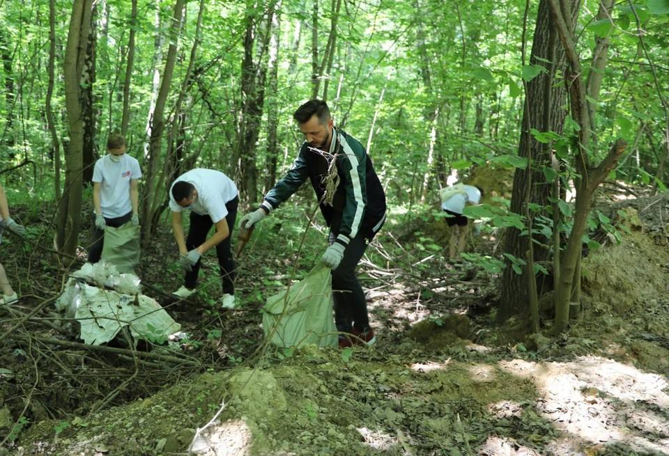 В четверг, 8 июля, проведен субботник в лесопосадке в поселке Барсуки.