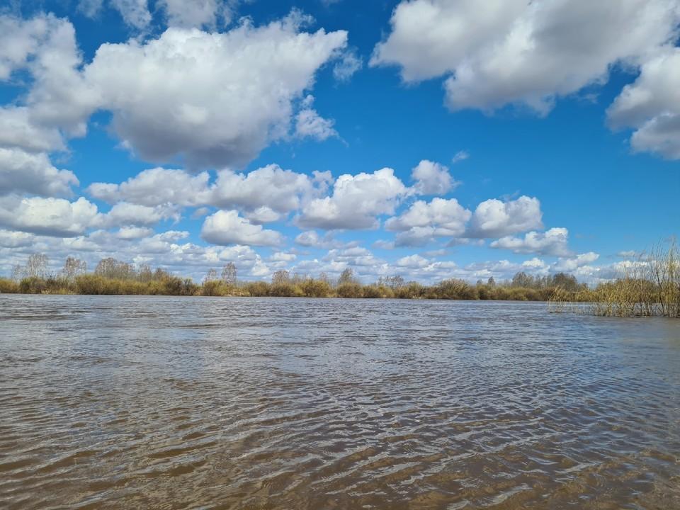 В водоемах Нягани и Октябрьского района нашли кишечную палочку