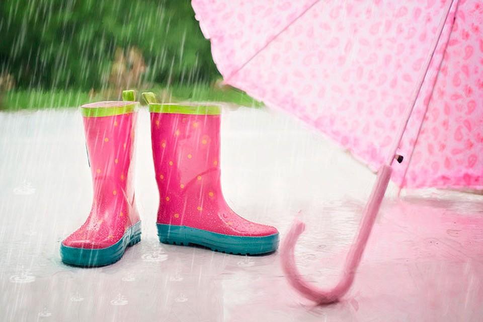 Не забывайте зонты! Фото: pixabay.com