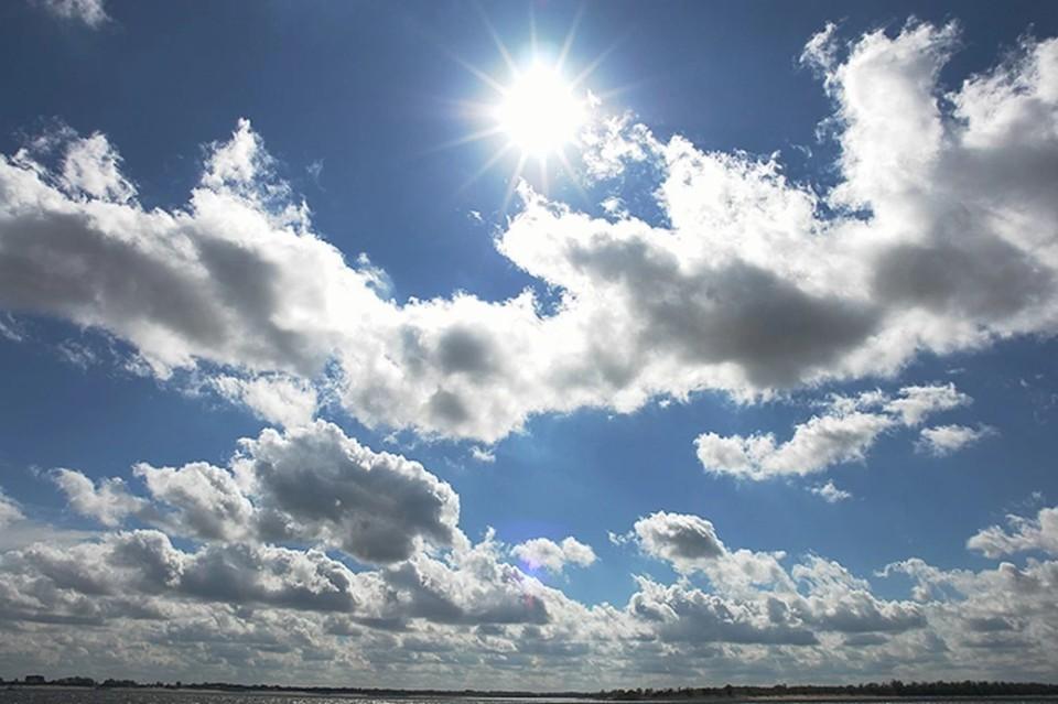 В Волгоградской области ожидается очень жаркое начало недели.