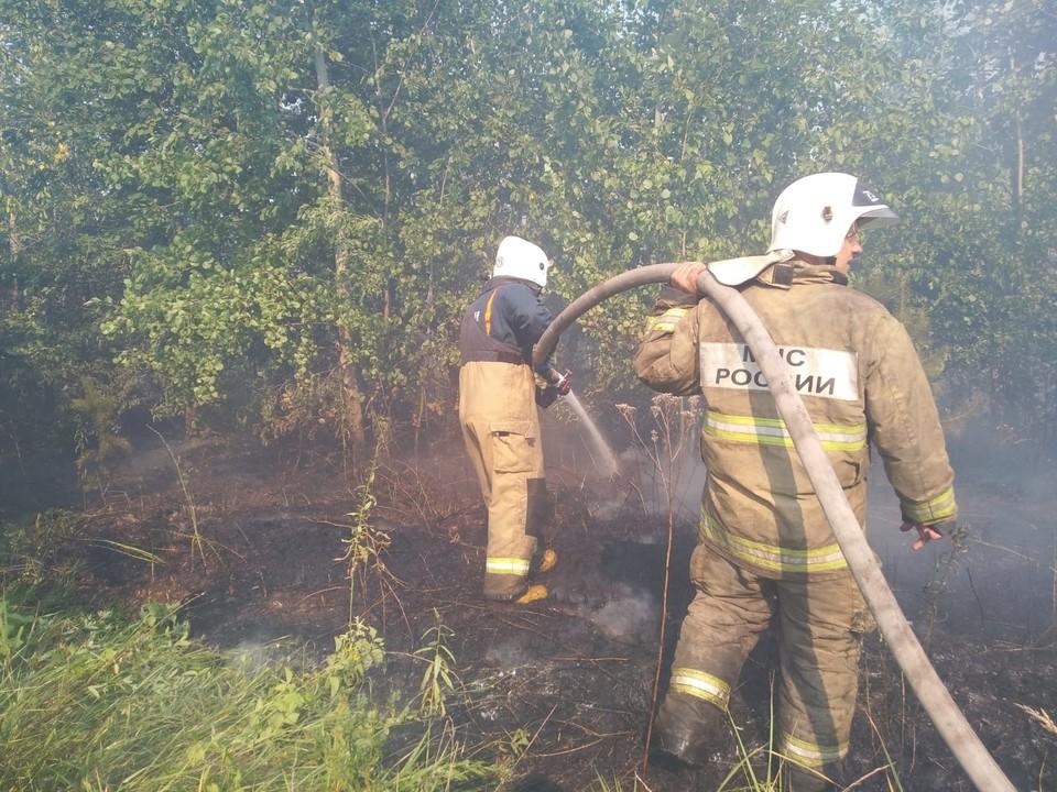 Крупный лесной пожар в Тольятти тушат вторые сутки. Фото: ГУ МЧС по Самарской области