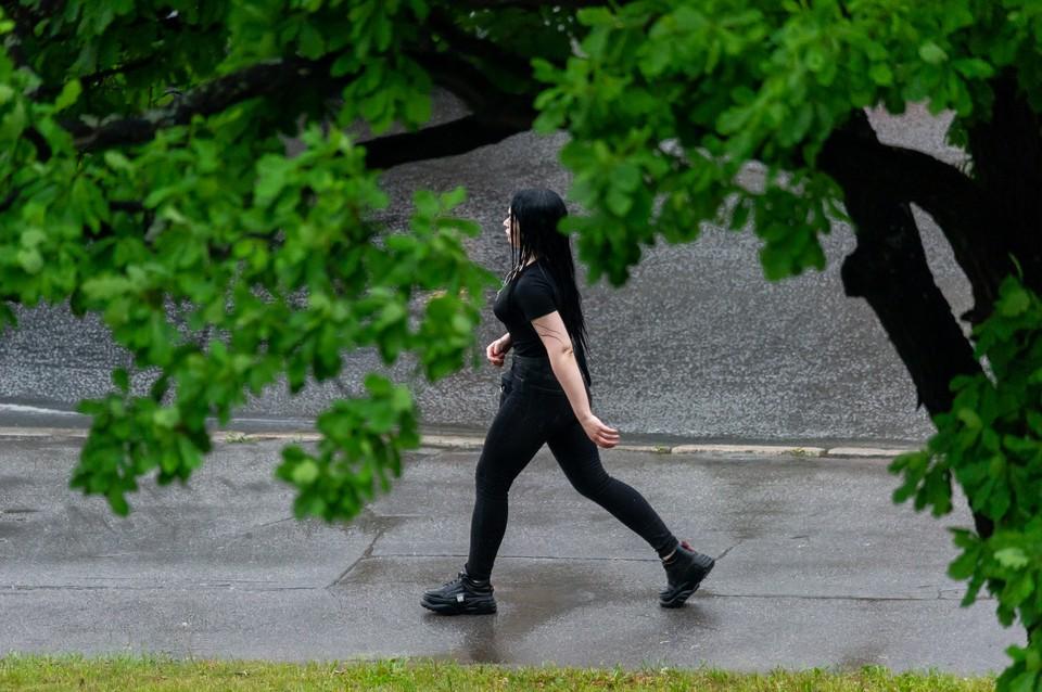 Дождь и гроза пройдут 13 июля в Ленобласти