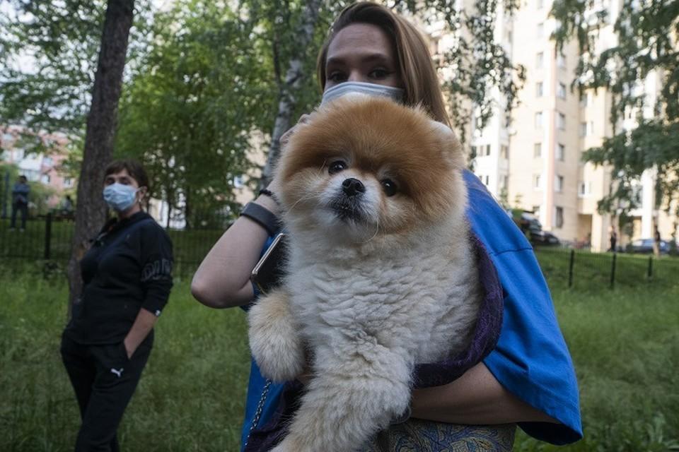 На Среднем Урале сохраняется масочный режим