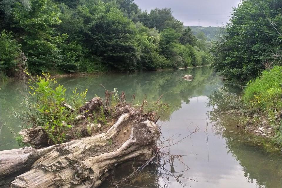 Это место, с которого началось наводнение. Сложно представить, что эта тихая речушка вышла из берегов.Фото: Юлия Краснова