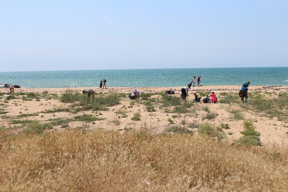 Субботники в заповеднике стали доброй традицией. Фото: ФГБУ «Заповедный Крым»/VK