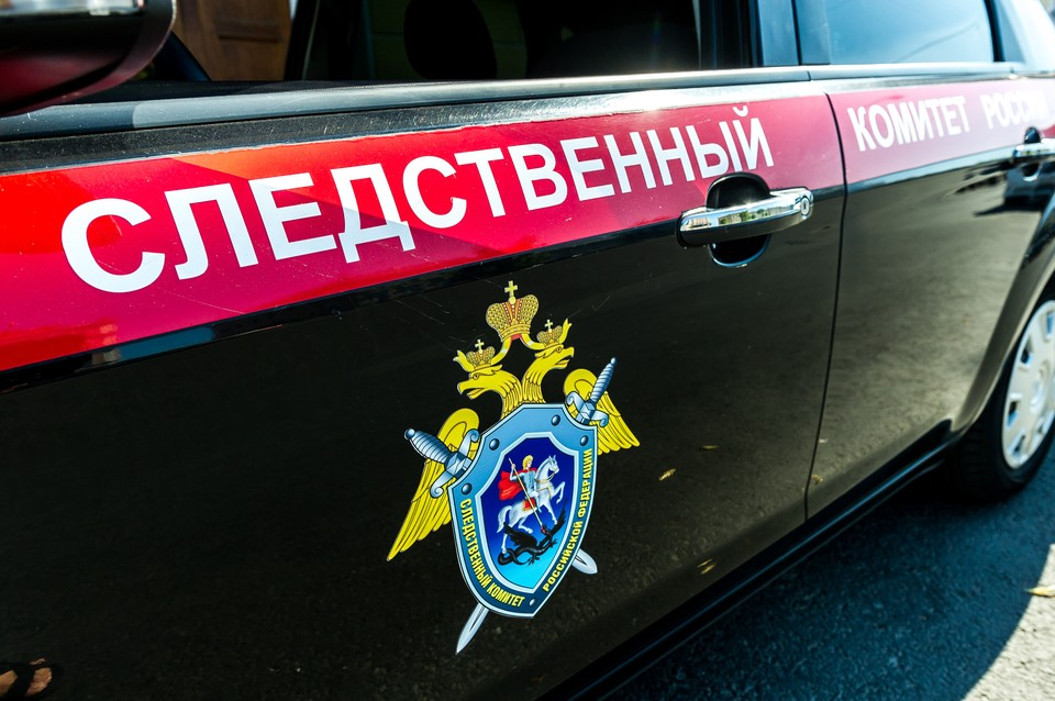 Петербуржцу грозит тюрьма за развращение девочки