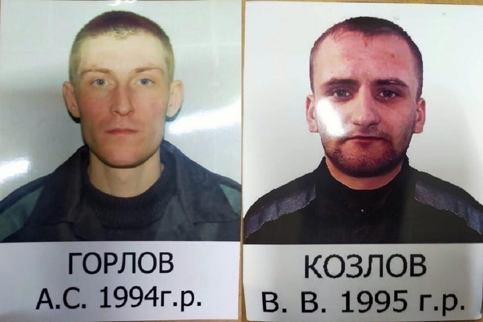 О побеге стало известно 12 июля. Фото: ГУФСИН.