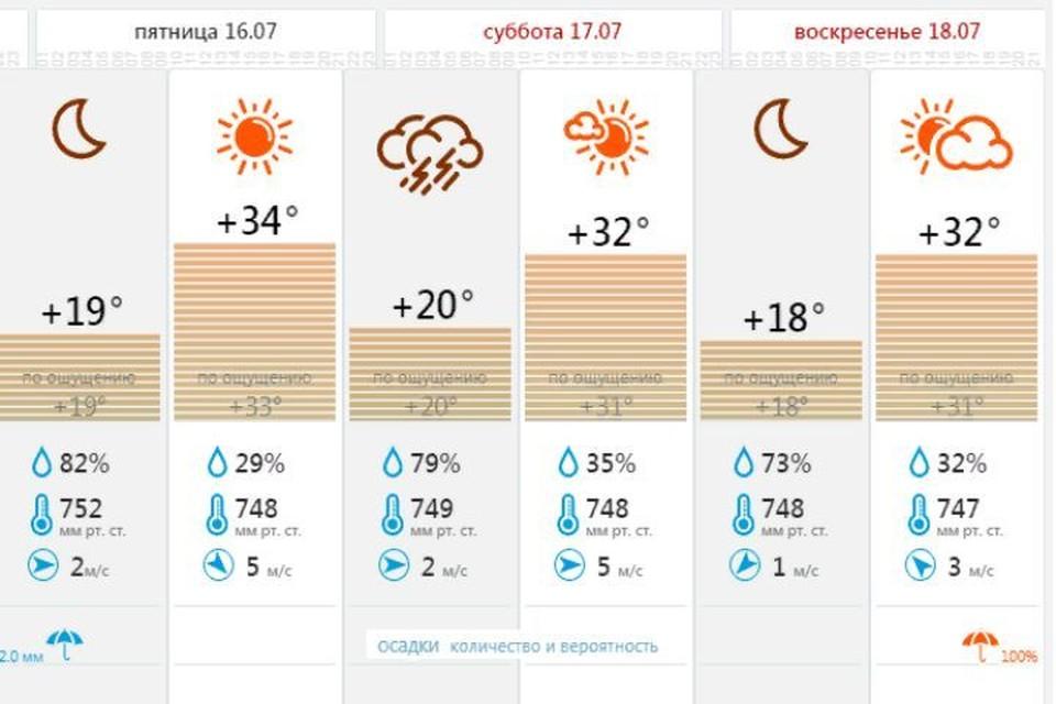 """В Ярославской области в выходные сохранится жаркая погода. Скриншот, Центр """"Фобос"""""""