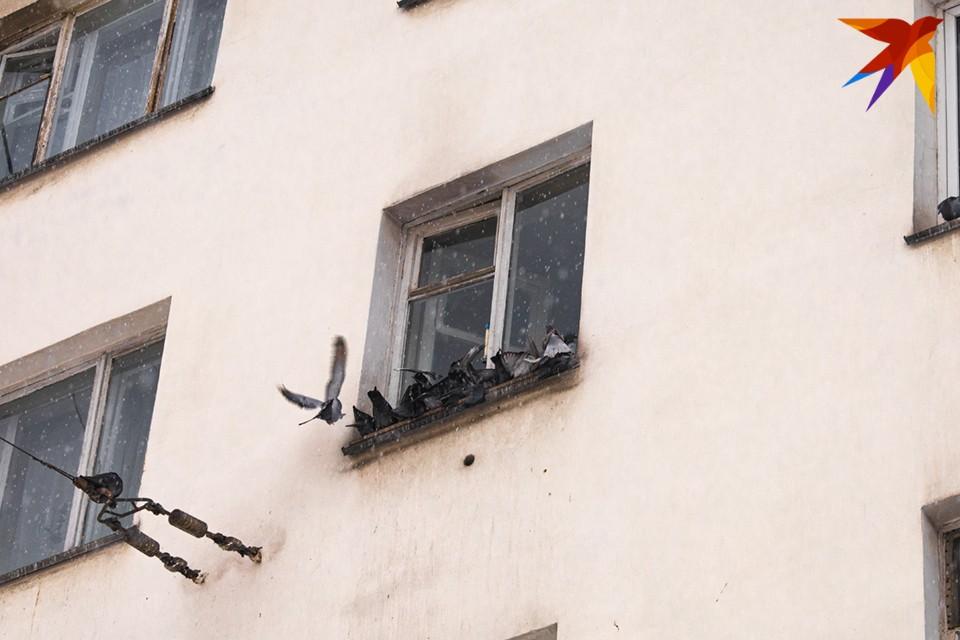 Все бы ничего, да только в доме недавно сделали капитальный ремонт и обновили фасад.
