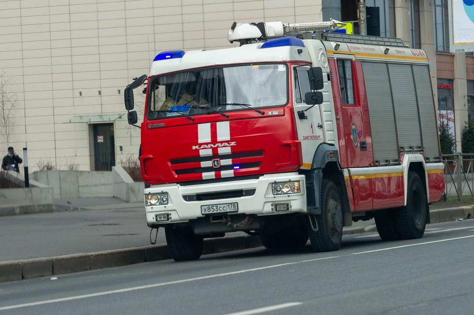 Двухлетняя девочка с бабушкой и дедушкой погибли в пожаре в Ленобласти