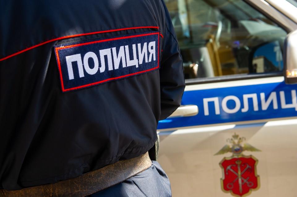 Полиция ищет женщину, избившую палкой двух детей и сотрудницу МВД.