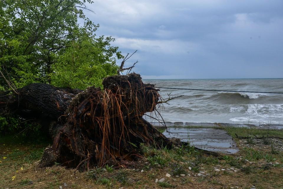 В акватории возможны грозы и штормовой ветер до 20-25 м/с