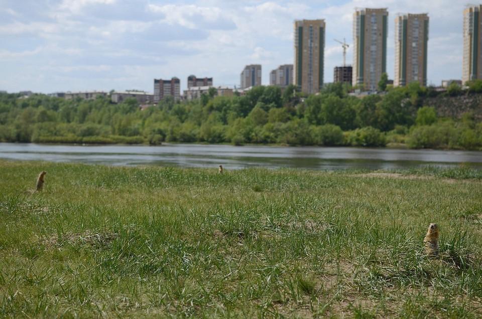 Погода в Красноярске на 23 июля 2021: до +27 градусов и солнце
