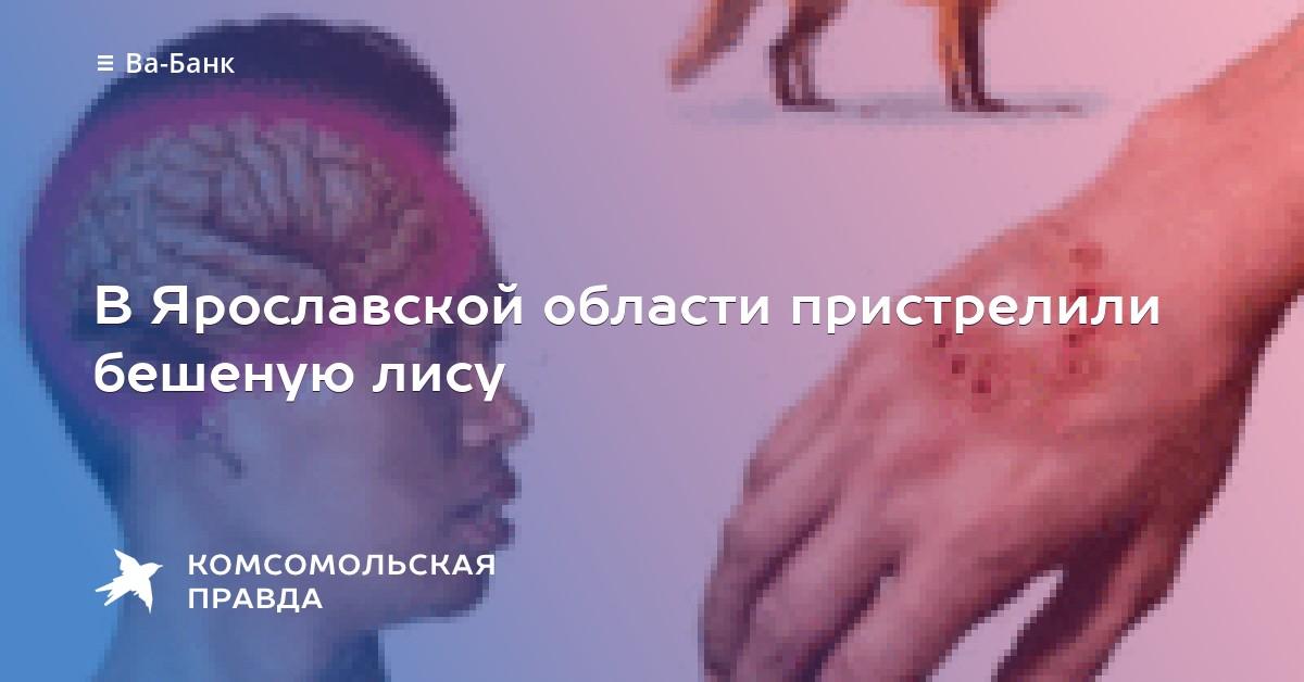 (модель бешенство в ярославской области герой Гриша