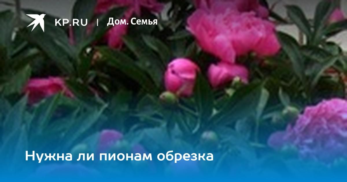 cr-1200-630.wm-asnpmfru-100-tr-0-0.t-13-830396-ttps-47-8-0083CD-1010-l-85-b-41.t-13-830396-ttps-47-8-FFF-1010-l-85-b-42.t-207-7-asb-37-10-FFF-788-l-370-t-68  ... da120abc1b2ec