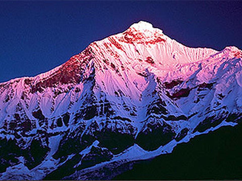 Некоторым ледникам Гималаев угрожает полное исчезновение