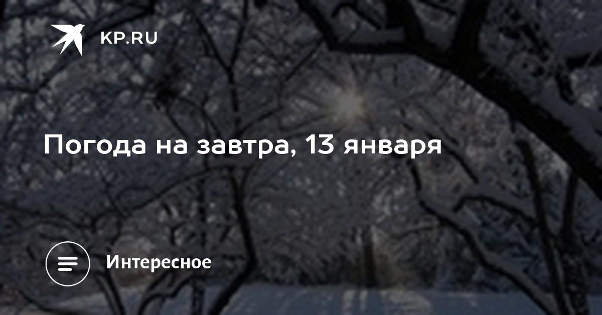 Эйфоретик Телеграм Серов что если принимать паксил и курить траву