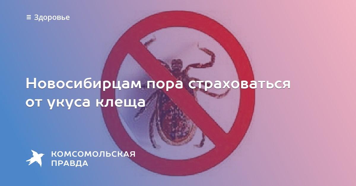 Застраховаться от укуса клеща в новосибирске