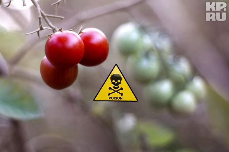 Содержание ДДТ превысило установленные нормативы в 2,5, а содержание хлорталонила - в 48 раз!