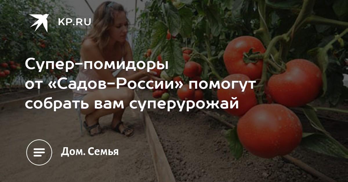 HTML -цвета, их коды, описание и названия на русском и 64