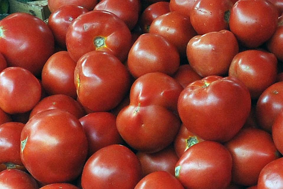 Можно ли вырастить крупноплодные томаты в открытом грунте? Отвечаем!