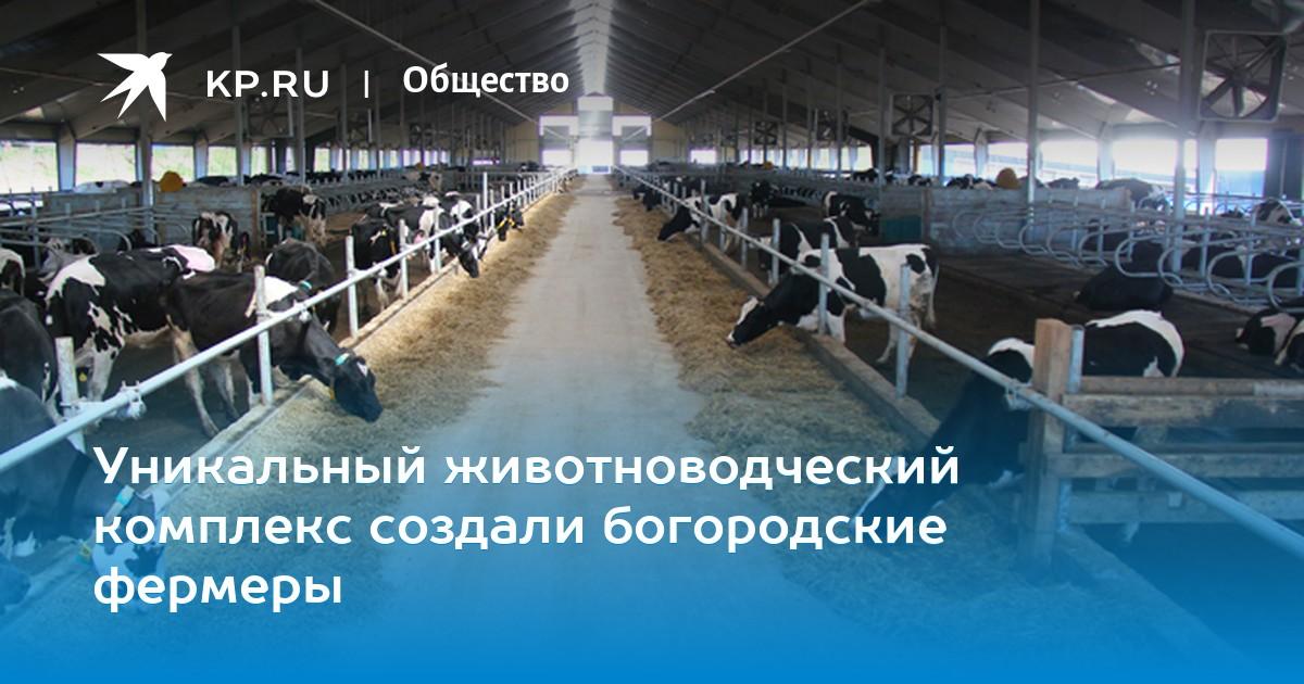 Система карусель для дойки коров в агрызе
