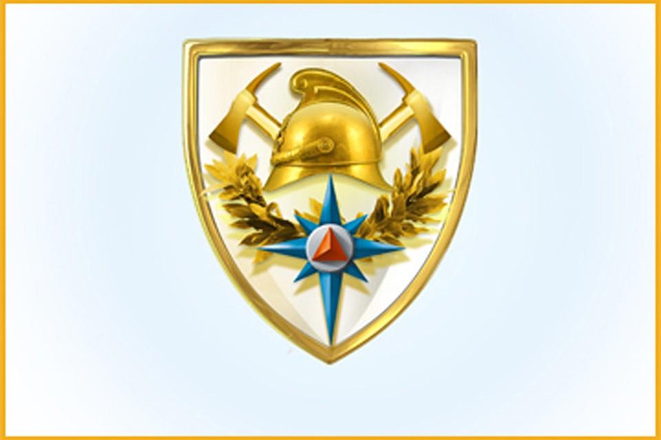 эмблема пожарной охраны россии том, что снимок