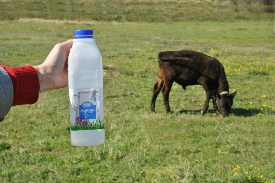 Инвесторы смогут вкладывать деньги в те отрасли, которые в Крыму пока что в упадке, в частности это касается молочки