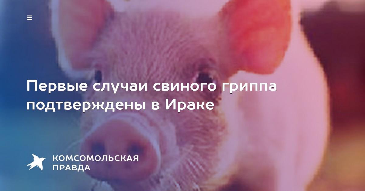 Свиной грипп первые