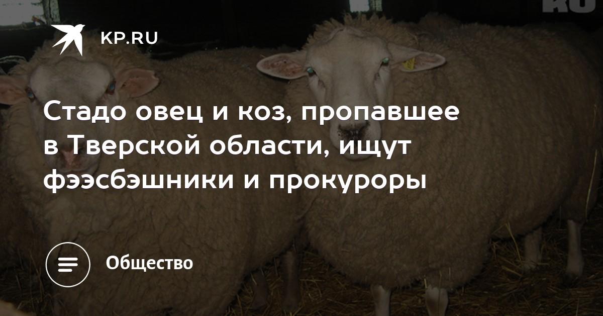 Слабый президент: украинские СМИ о победе Зеленского