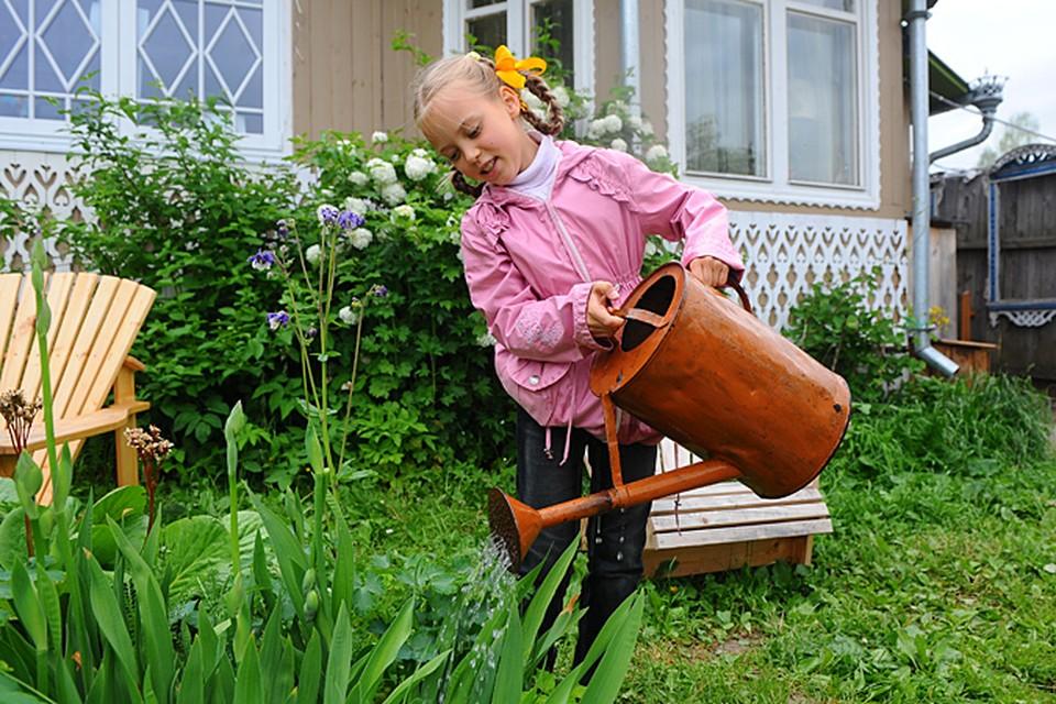 Членство в садоводстве по наследству не передается...