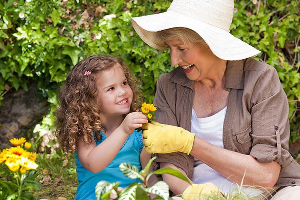 Фото: www.h-assistance.it