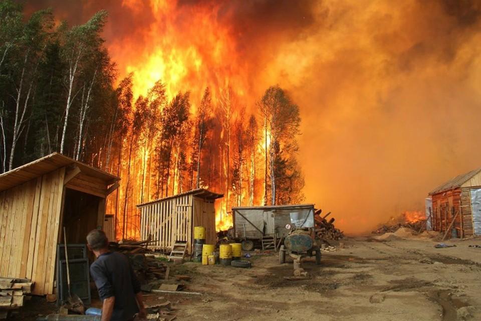 Верховой пожар в Прибайкальском районе Бурятии. Фото: Виталий Греков