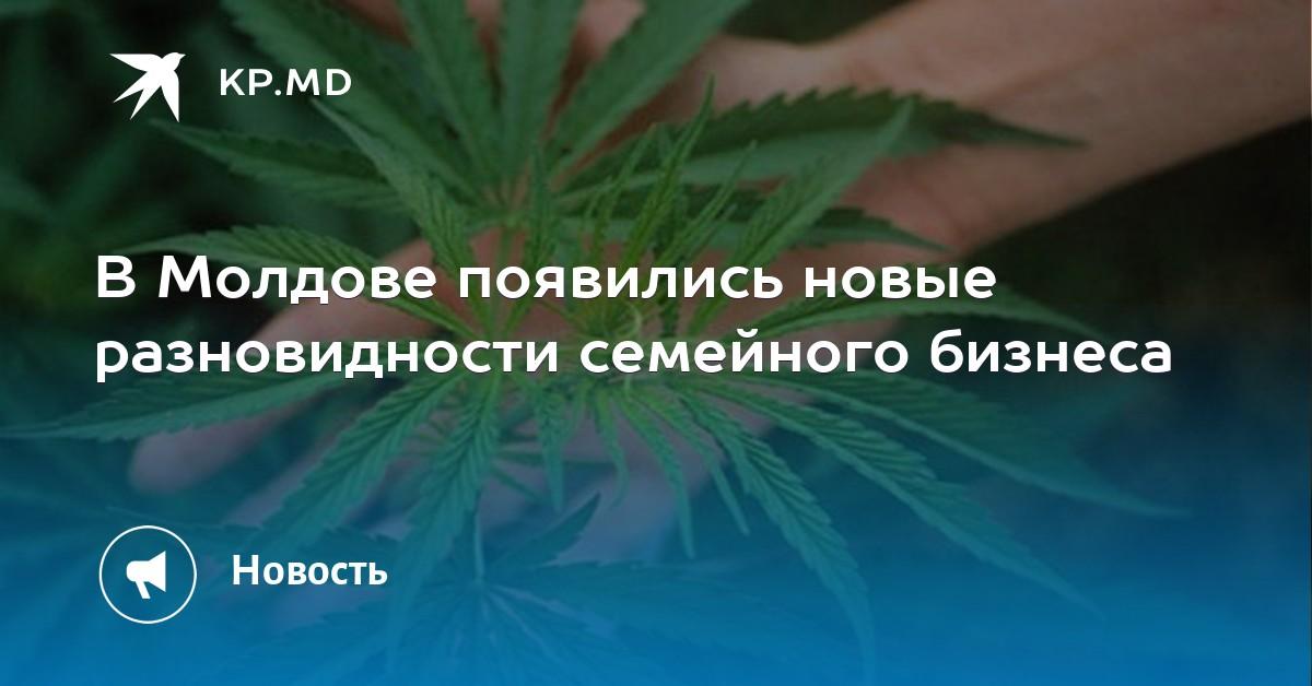 Свх радио конопля купить марихуаны в ростове