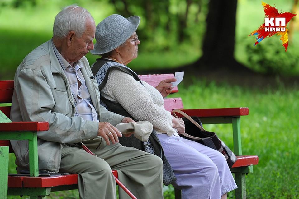 Фото день пожилого человека, котята смешные