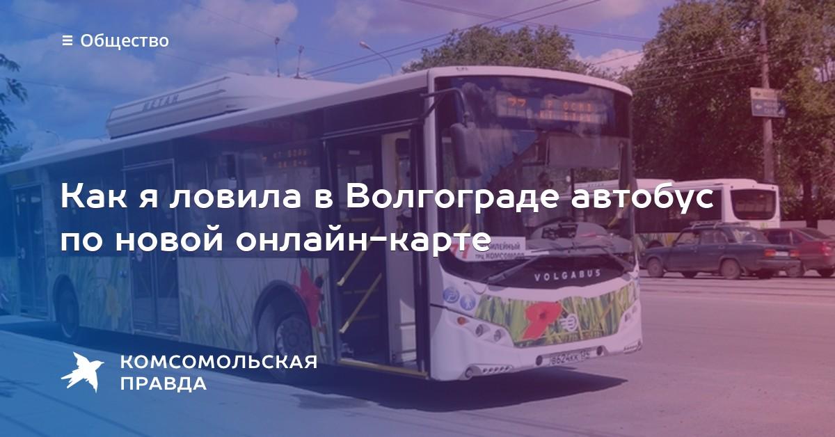 новые автобусы в волгограде 2016 отойти этих клише