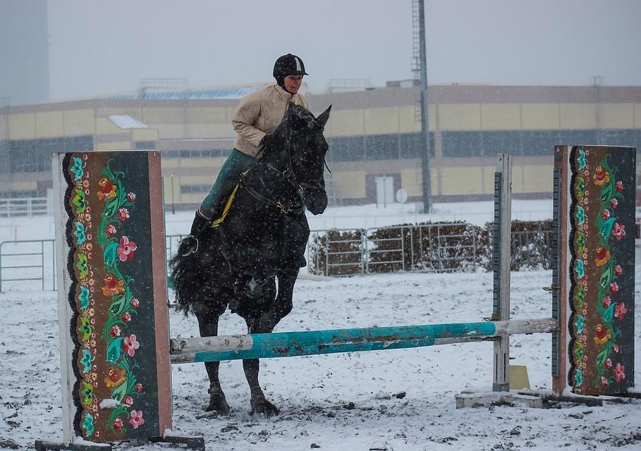Смотреть секс в конном спорте, смотреть русское жесткие групповые оргии