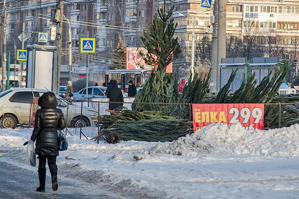 Первое, что напомнило самарцам о приближении Нового года - елочные базары!
